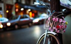 rower miasto