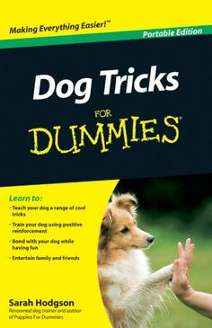 Dog Tricks For Dummies (For Dummies (Pets)) -- Check this awesome product by going to the link at the image. (This is an affiliate link and I receive a commission for the sales) #thedogist