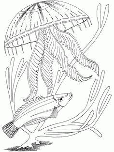Elegant Free Ocean Coloring Pages 89 Free Printable Ocean Coloring
