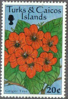 Stamp: Geiger tree (Cordia sebestena) (Turks and Caicos Islands) (Flowers) Mi:TC 1357