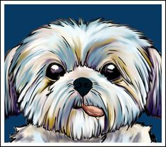 shih tzu dog Art Print by spetenfia Perro Shih Tzu, Shih Tzu Puppy, Shih Tzus, Yorkie, Puppy Drawing, Lhasa Apso, Dog Paintings, Dog Art, Dog Love