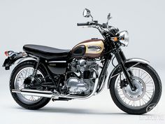 Standard Kawasaki W650. Got to live it even like this.