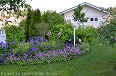 Kanelia ja kardemummaa: piha ja puutarha