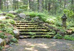 Tower Hill Botanical Gardens, Boylston, MA - Moss Steps