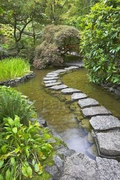 I can just imagine a little girl stepping carefully across these stepping stones, peering into the green, glassy water as she pauses, mesmerized by what lies beneath its cool surface.