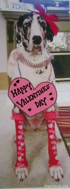 Valentine Dane