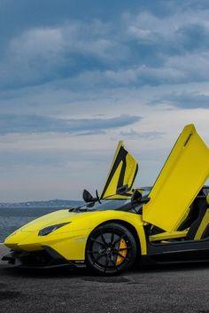 Lamborghini 50th Anniversario Roadster