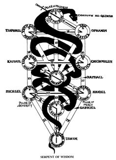 Serpent of wisdom on the tree of life.