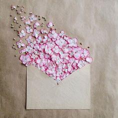 FLOWER FUN | ZsaZsa Bellagio - Like No Other