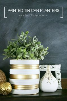 Empty tins are a superb material to make beautiful objects and ornaments for the garden or home. Withstand, we can paint, drill, or decorat...