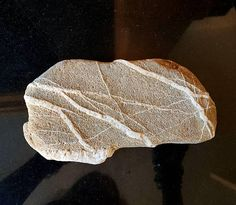 This rock is natural, undrilled and unpolished, collected at an East Cork beach in Ireland. Very unique and unusual look. With natural quartz 'rock veins' running throug it. Irish Beach, Aquarium Rocks, Ireland Beach, Quartz Rock, Flat Stone, Flat Rock, Artist Supplies, Beach Stones, My Etsy Shop