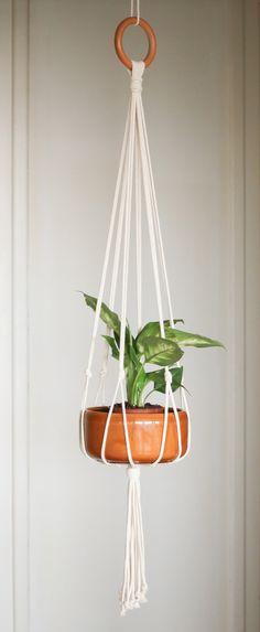 Suspension en macramé sur anneau de bois pour plantes ou autre décoration