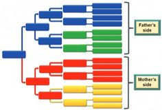 The color-coded genealogy research filing system is a comprehensive and highly rated organizational system for any genealogist and family historian. Genealogy Websites, Genealogy Forms, Genealogy Chart, Genealogy Research, Family Genealogy, Make A Family Tree, Family Tree Chart, Family Trees, Family Tree Research