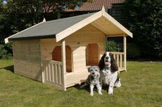 Double Dog House ... This double dog house offers large and private space for two dogs.