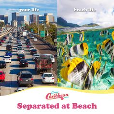 Might we suggest taking the next exit to the beach? #SeparatedatBeach #CheapCaribbean
