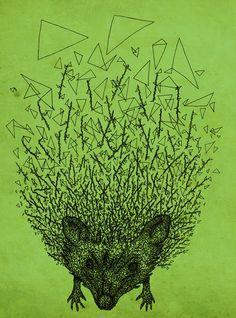 Thorny hedgehog  by Julia Kisselmann
