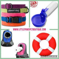 Little Paws Pet Boutique Pet Boutique, Find Pets, Spring Sale, Hard To Find, Stay Safe, Selling Online, Pet Products, Best Sellers