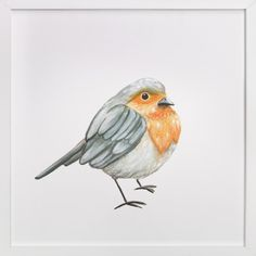 """""""My Robin"""" - Art Print by Aga in beautiful frame options and a variety of sizes. Different Birds, Cute Birds, Aga, Custom Art, Watercolors, Amazing Art, Wall Art Prints, Art For Kids, Robin"""