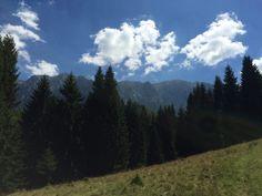 Hiking in Piatra Craiului, enjoying the nature
