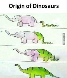 Holy shit I can't look at dinosaurs the same ;~;