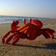 Fancy - LEGO Land Crab