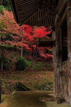 七夕 神社