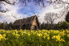 A replica of a Viking home in the island of Gotland, Sweden Viking House, Viking Life, The Swede, Peaceful Places, Wilderness, Vikings, Sweden, Landscape, Travel