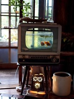 I'm always one to advocate killing your tv but why not turn it into an aquarium instead? Only good use for a tv. =] Then again with flat screens these days you might be able to get away with an ant farm. Hah!