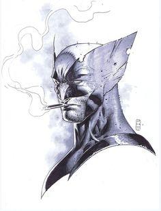 Wolverine by Stephen Platt