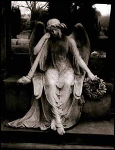 DON'T BLINK! (gorram stone angels always weird me out.)