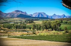 The town of Wellington will indulge your need for the country life and it is here that you can find characterful Wellington real estate. Country Life, Property For Sale, Africa, Real Estate, Mountains, Travel, Beauty, Viajes, Country Living