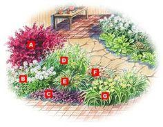 Plant List: (A) Japanese barberry 'Bailtwo'. (B) Garden phlox 'David'. (C) Bugleweed 'Bronze Beauty'. (D) Northern sea oats. (E) Fountain grass 'Hameln'. (F) Blackberry lily. (G) Daylily 'Happy Returns'.