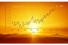 Global heating and the dilemma of climate scientists. 2015 was Planet Earth's warmest year since modern record-keeping began in 1880.  In private conversations, many climate scientists express far greater concern at the progression of global warming and its consequences than they do in public