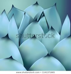 Find Cactus Succulents Illustration stock images in HD and millions of other royalty-free stock photos, illustrations and vectors in the Shutterstock collection. Thousands of new, high-quality pictures added every day. Cactus, Succulents, Royalty Free Stock Photos, Illustration, Pictures, Image, Photos, Succulent Plants, Illustrations