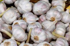 El ajo (allium sativum) es un remedio natural que baja los niveles de colesterol y la tensión sanguínea. El ajo es muy saludable para el corazón.