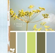 Throw in a Chocolate Brown, Grey or Black and this could be the color scheme of my whole house.
