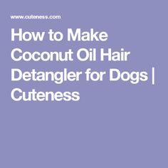 How to Make Coconut Oil Hair Detangler for Dogs | Cuteness