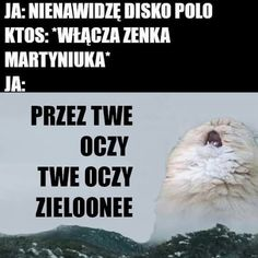 True Memes, Funny Memes, Jokes, Weekend Humor, Stupid, Humor, Husky Jokes, Memes, Hilarious Memes