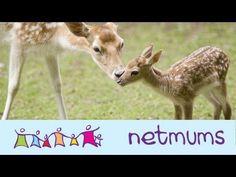 5 Free Things to do in West London #YouTube #netmums #parenting #london #richmondpark #kewgardens #gunnersby #fulhampalace #royalbotanicgardens #brentlodgepark