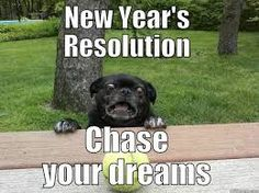I laughed so hard my back popped lol New Year Meme, Funny New Year, Funny Animal Pictures, Funny Animals, Pug Pictures, Animal Pics, Adorable Animals, Baby Animals, Lol
