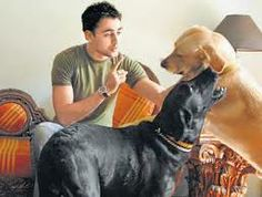 #Imran Khan with his dogs. He also wants people to start adopting dogs and stop buying them.
