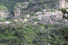 Love this view of the terraced hillside in Positano!