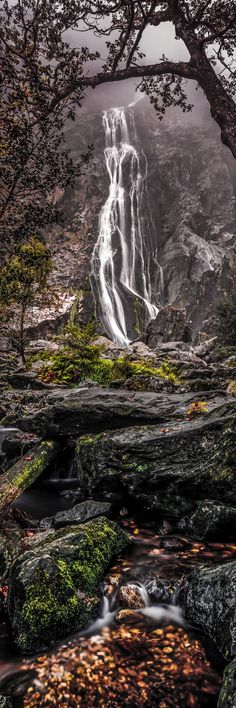 Powerscourt Waterfall, Wicklow, Ireland. Look at it closely and you'll see a woman with her hands behind her back (shes facing the left)
