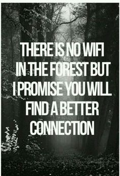 Ideas nature quotes adventure outdoors thoughts for 2019 Great Quotes, Quotes To Live By, Me Quotes, Inspirational Quotes, Promise Quotes, Beauty Quotes, Quotes About Nature, Peace Quotes, Quotes About Forest