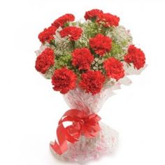 Carnation for Valentine