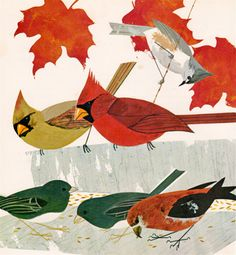 From Introducing Our Eastern Birds, illustrated by Ron King, 1970