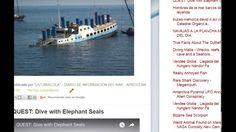 """13/02/17 11:20hs  Boletín """"La Caracola""""  D.I.M. - Diario de Información del Mar Aprocean Blog http://aprocean.blogspot.com.es"""