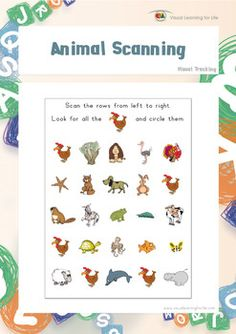 "In the ""Animal Scanning"" worksheets, the student must find all the animals that look the same as the example at the top of the page.  The student's eyes must move from left to right along each row (not deviate up or down).  Available at www.visuallearningforlife.com on the Visual Tracking Skills Builder CD."