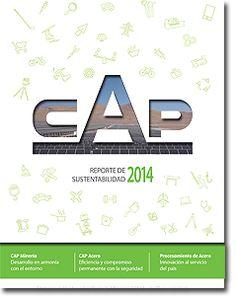Reporte de Sustentabilidad CAP - 2014