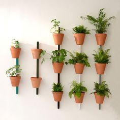 Supporto a parete XPOT / Per 4 vasi da fiori o mensole - H 200 cm - Compagnie